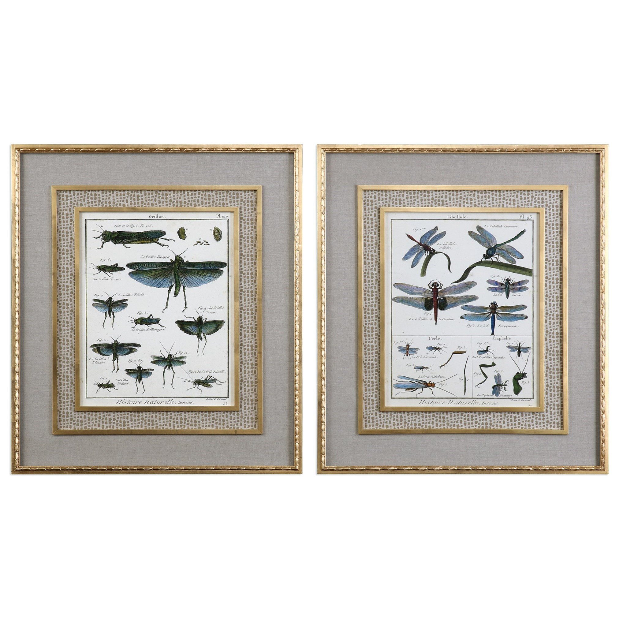 Uttermost Art Naturelle Insects (Set of 2) - Item Number: 41564