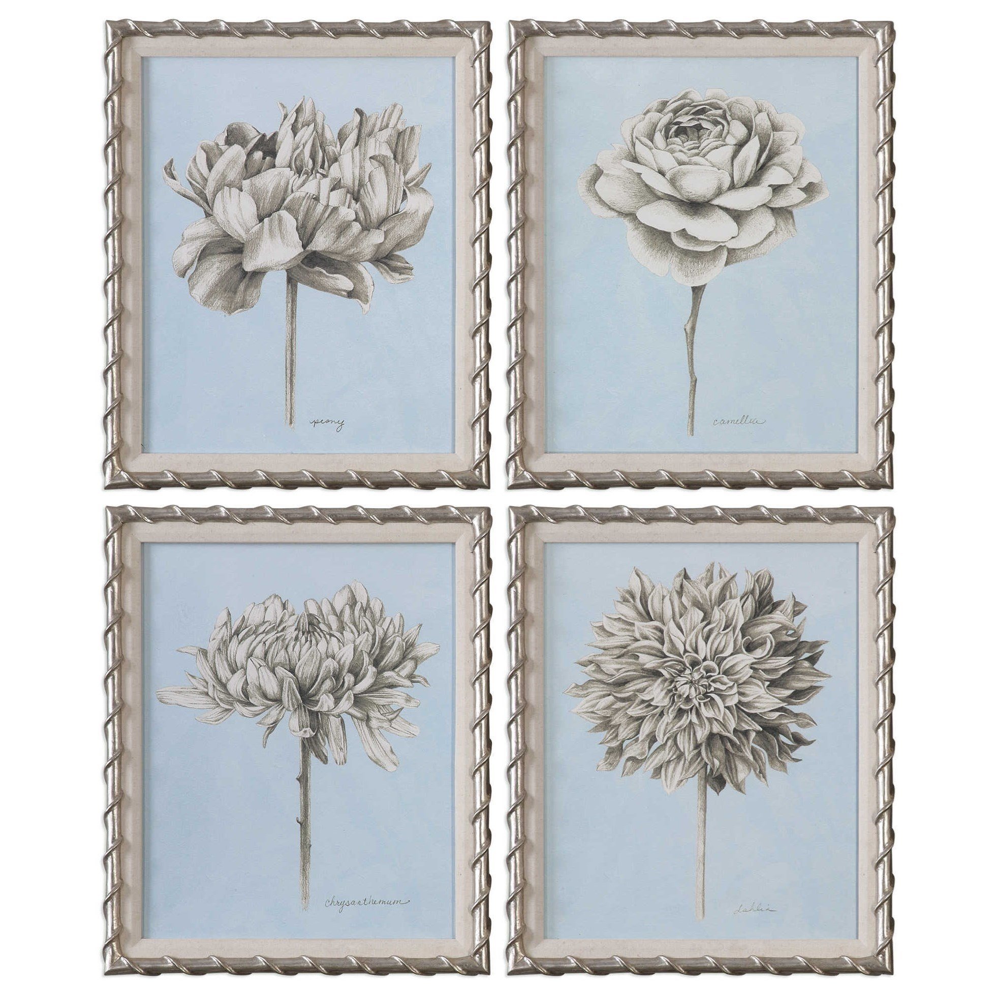 Graphite Botanical Study Floral Prints (Set