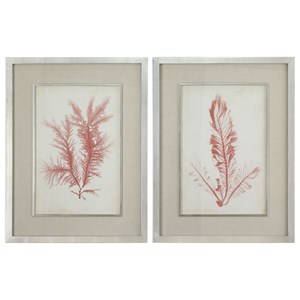 Uttermost Art Coral Sea Feathers Prints