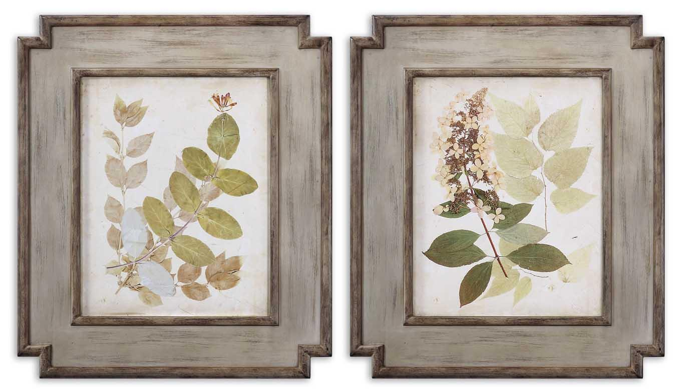 Uttermost Art Natures Collage Set of 2 - Item Number: 51069