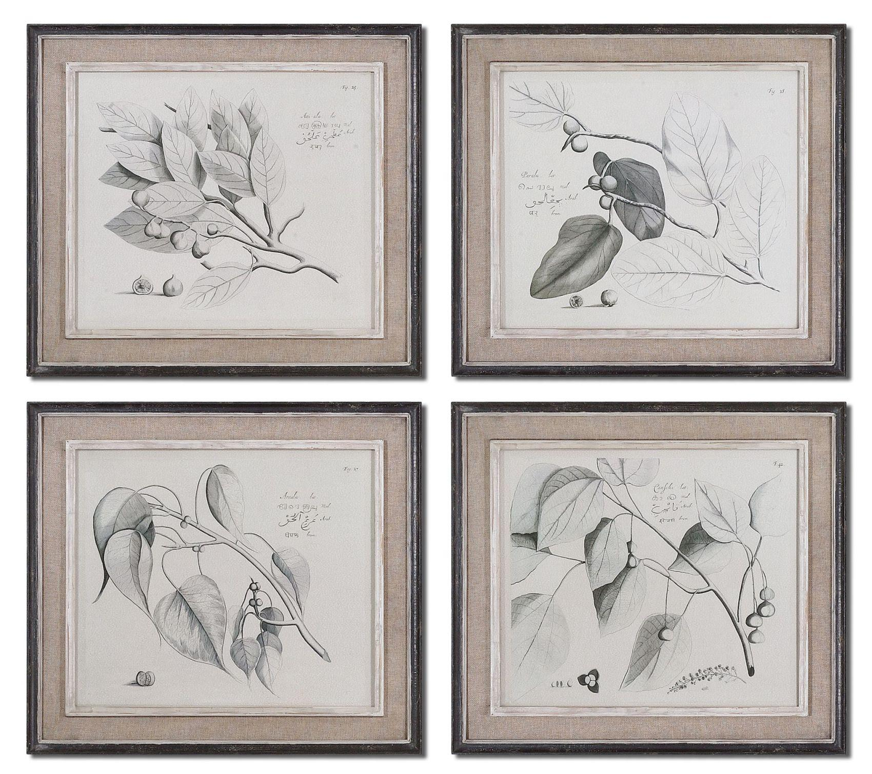 Uttermost Art Sepia Leaf Study Set of 4 - Item Number: 51073