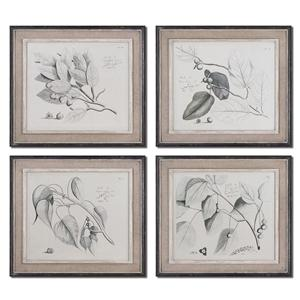 Uttermost Art Sepia Leaf Study Set of 4