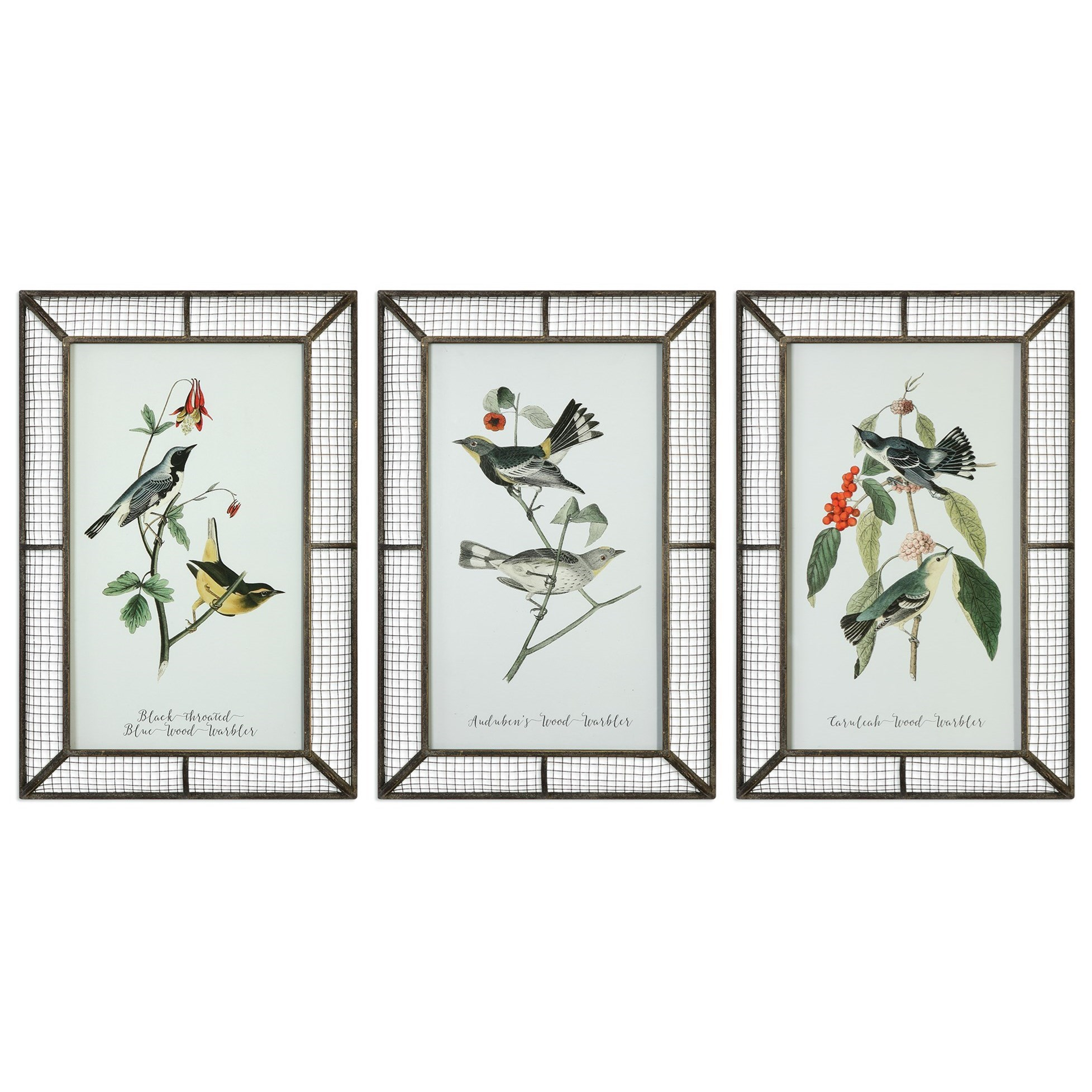 Uttermost Art Warblers (Set of 3) - Item Number: 51105