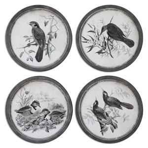 Uttermost Art Birds In Nature Framed Art, S/4
