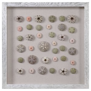 Uttermost Art Urchins Shadow Box