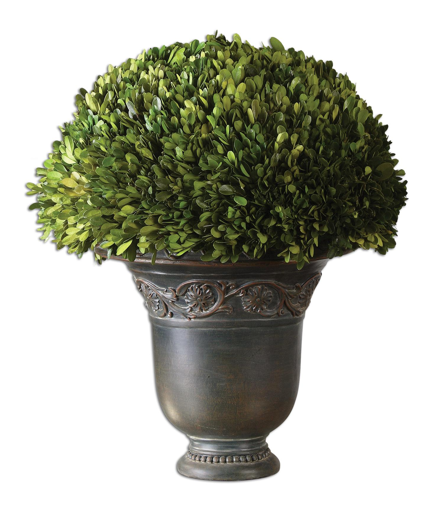 Uttermost Botanicals Preserved BoxwoodGlobe - Item Number: 60092