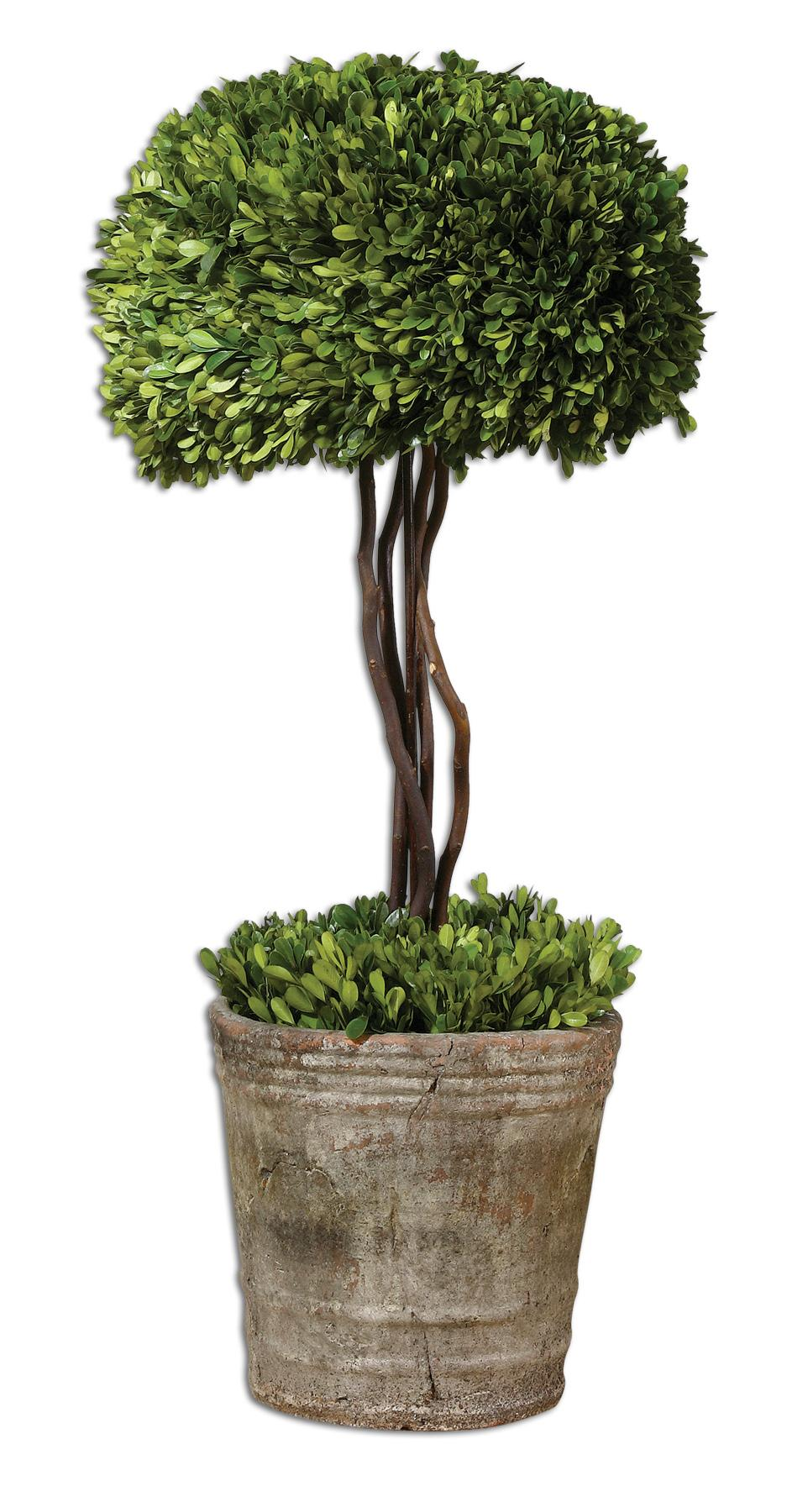 Uttermost Botanicals Preserved Boxwood Tree Topiary - Item Number: 60095