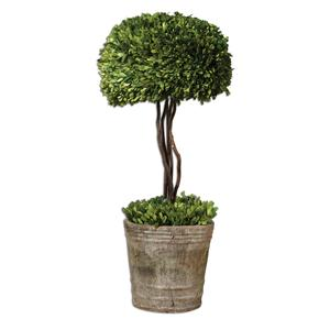 Uttermost Botanicals Preserved Boxwood Tree Topiary