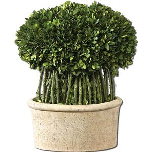 Uttermost Botanicals Preserved Boxwood Willow Topiary