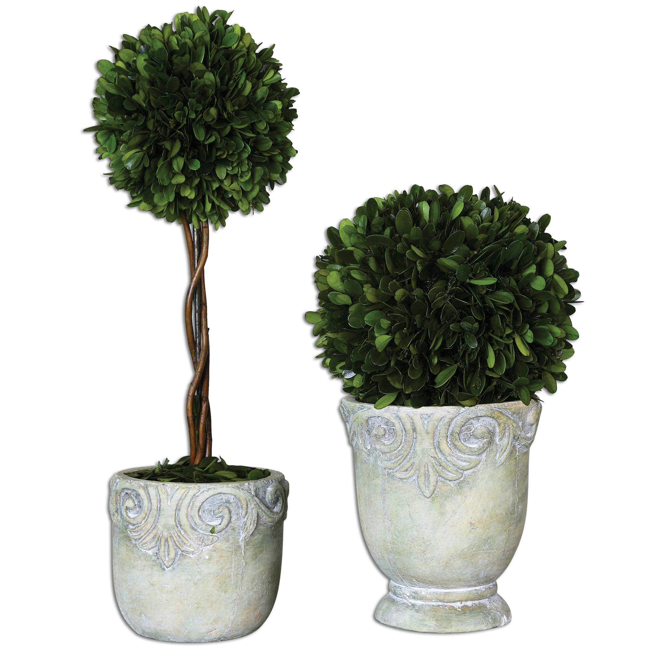 Uttermost Botanicals Preserved Boxwood Ball Topiaries S - Item Number: 60112