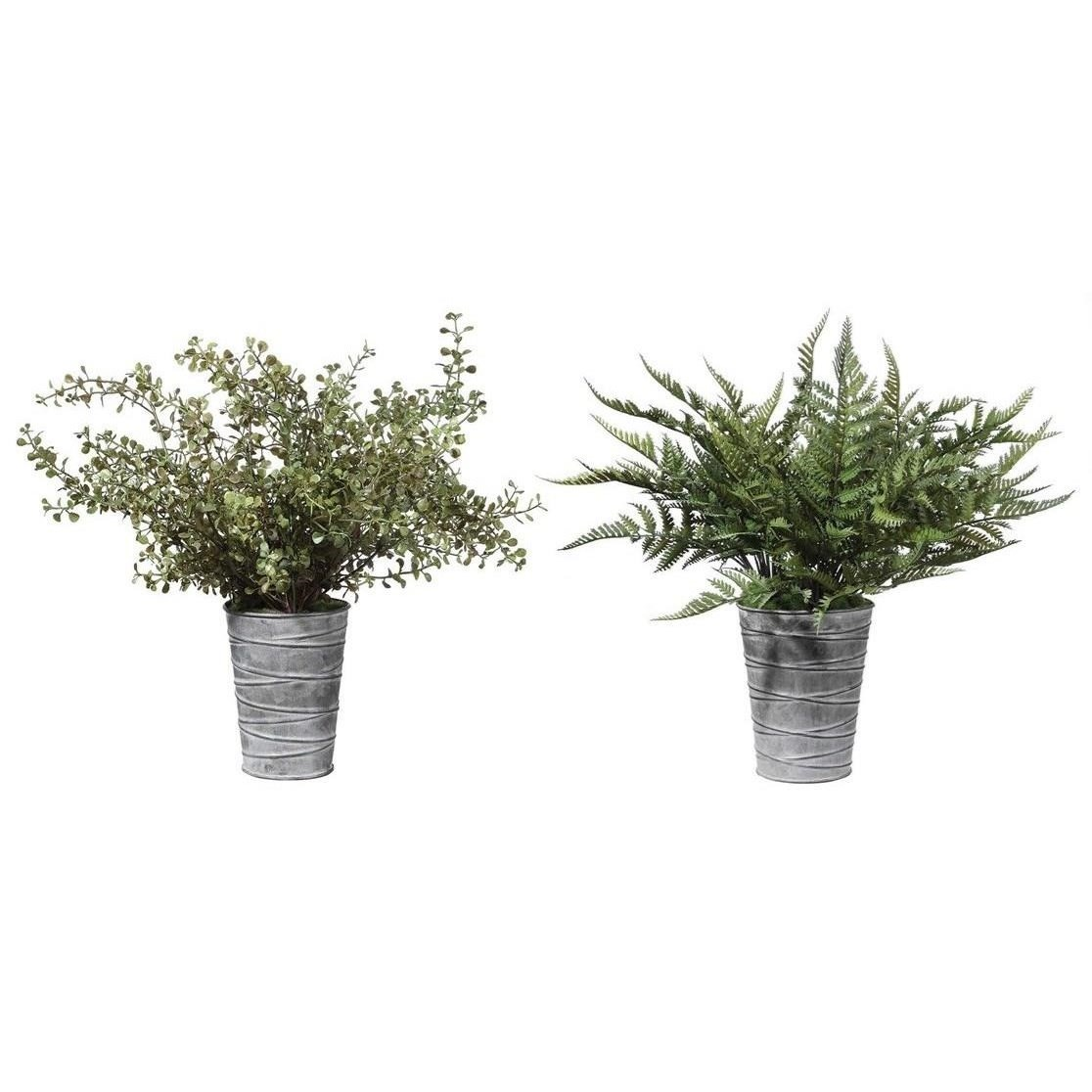 Quimby Potted Ferns Set/2