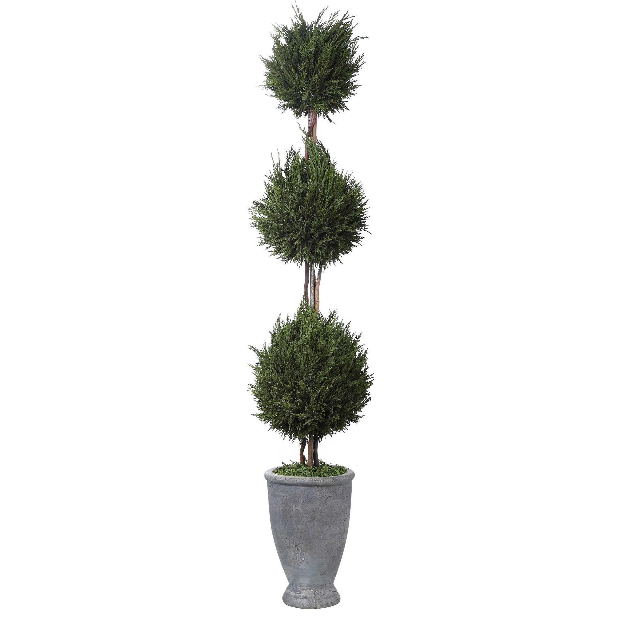 Cypress Triple Topiary