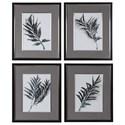 Uttermost Framed Prints Eucalyptus Leaves Framed Prints, S/4 - Item Number: 33687