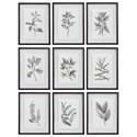 Uttermost Framed Prints Farmhouse Florals Framed Prints, S/9 - Item Number: 41617
