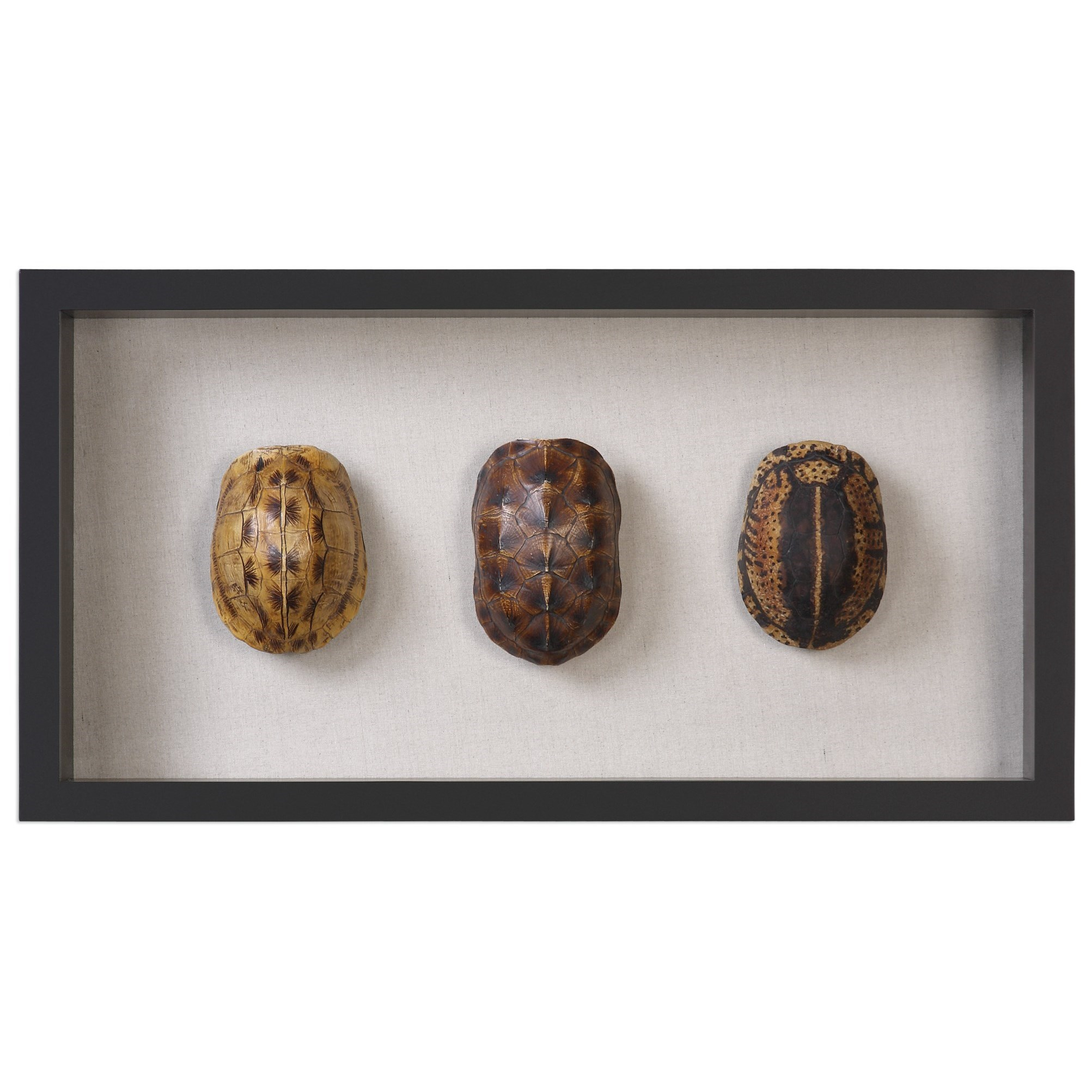 Uttermost Alternative Wall Decor Tortoise Shells Shadow Box - Item Number: 04068