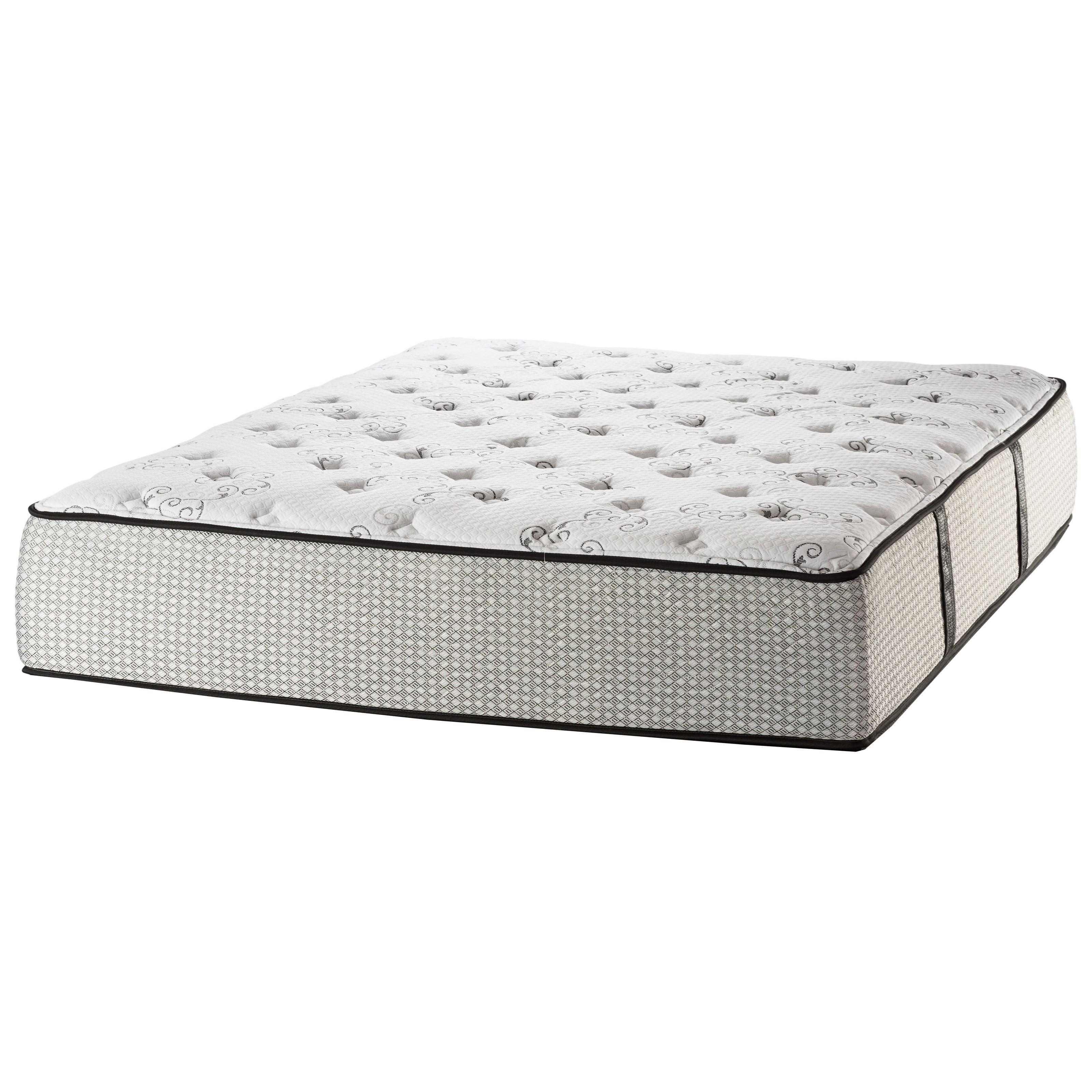 White Dove Mattress Cambridge State St Plush Queen Plush Mattress - Item Number: SSPlush-Q