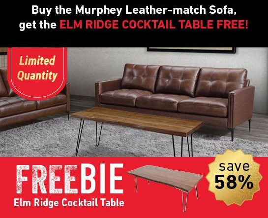 Murphey Murphey Leather Sofa with FREEBIE! by Abbyson at Morris Home