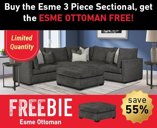 Esme Esme Sectional Sofa with Freebie! by Aria Designs at Morris Home