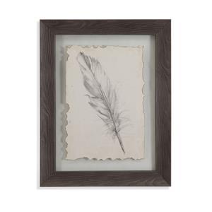 Feather Sketch III