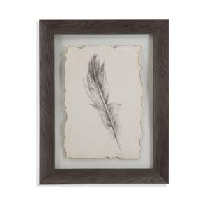 Feather Sketch IV