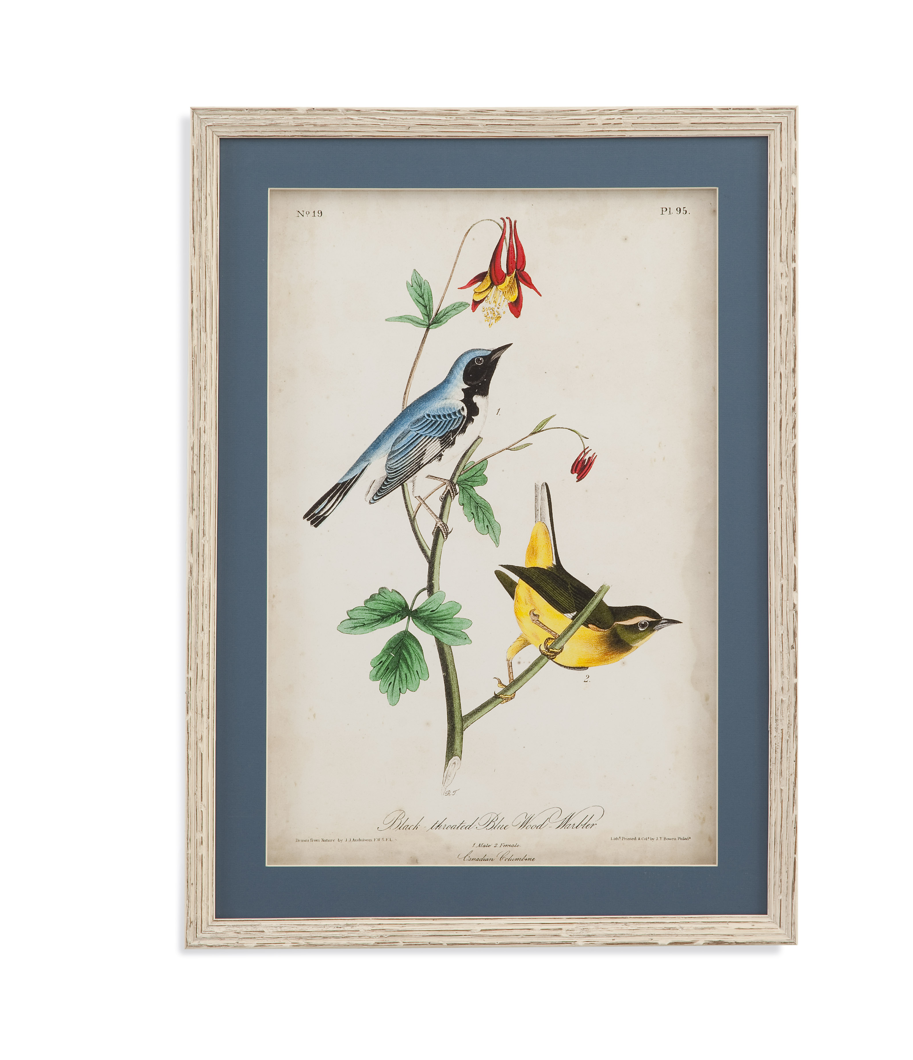 Home Accents Blue Wood Warbler by Bassett Mirror at Alison Craig Home Furnishings