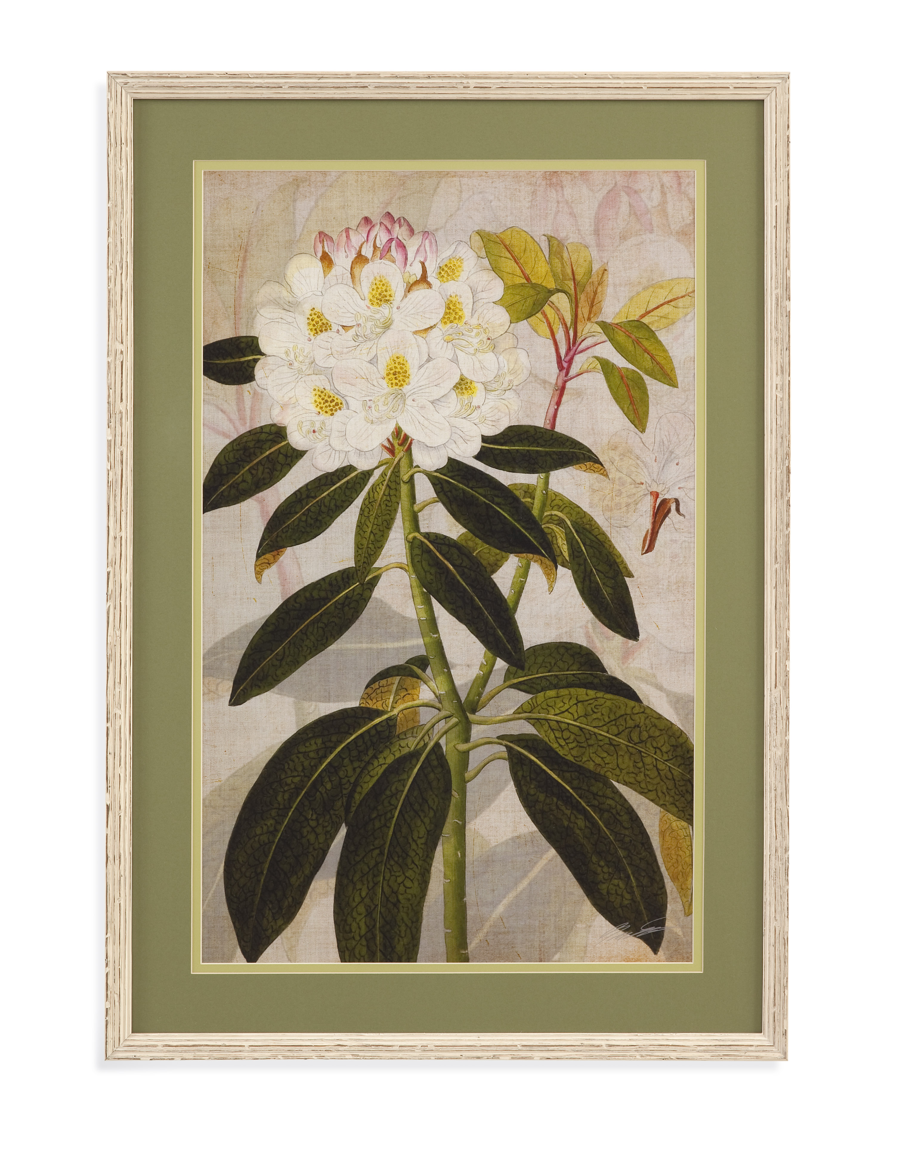 Home Accents Rhododendron I by Bassett Mirror at Alison Craig Home Furnishings