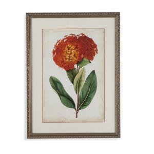 Tangerine Floral II