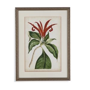 Tangerine Floral IV