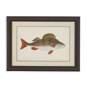 Donovan Antique Fish I
