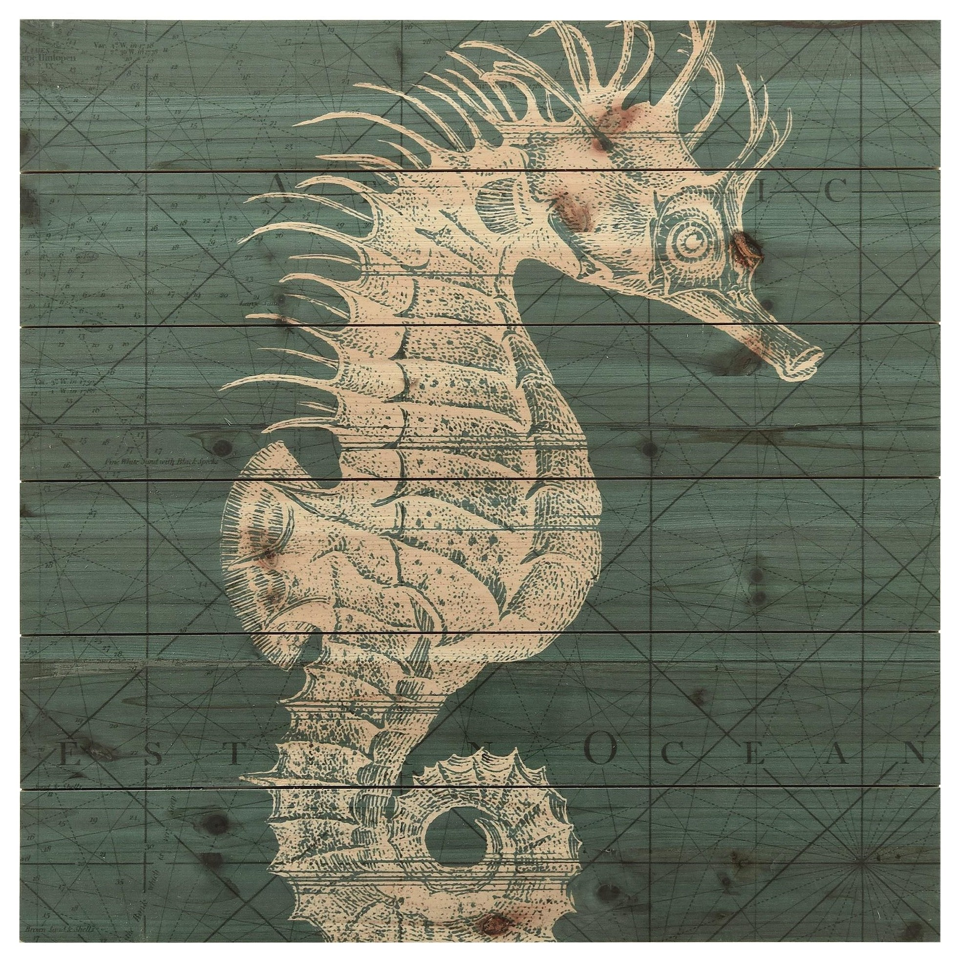 Accessories Coastal Menagerie C by Empire Art Direct at HomeWorld Furniture