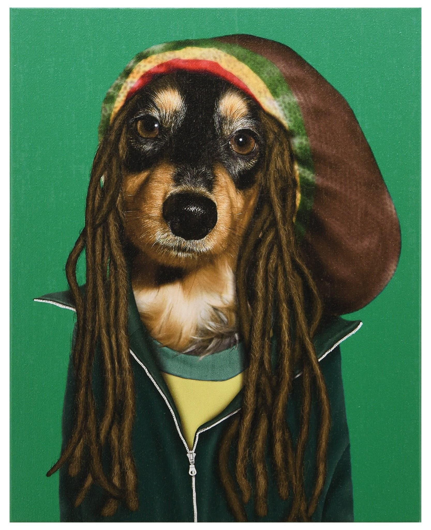 Accessories Reggae by Empire Art Direct at HomeWorld Furniture