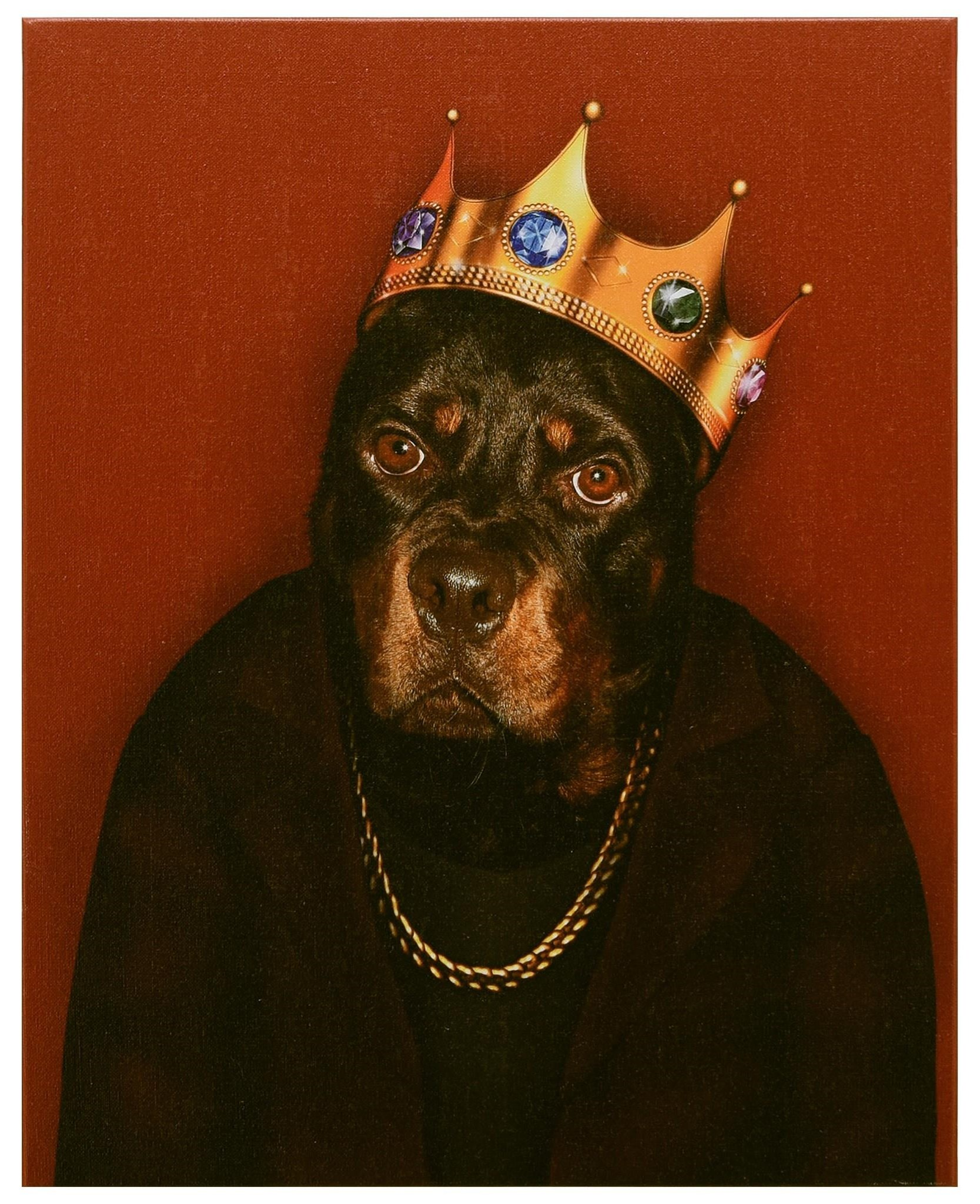 Accessories Big Doggie by Empire Art Direct at HomeWorld Furniture