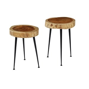 Wood and Iron Accent Tables (Set of 2)