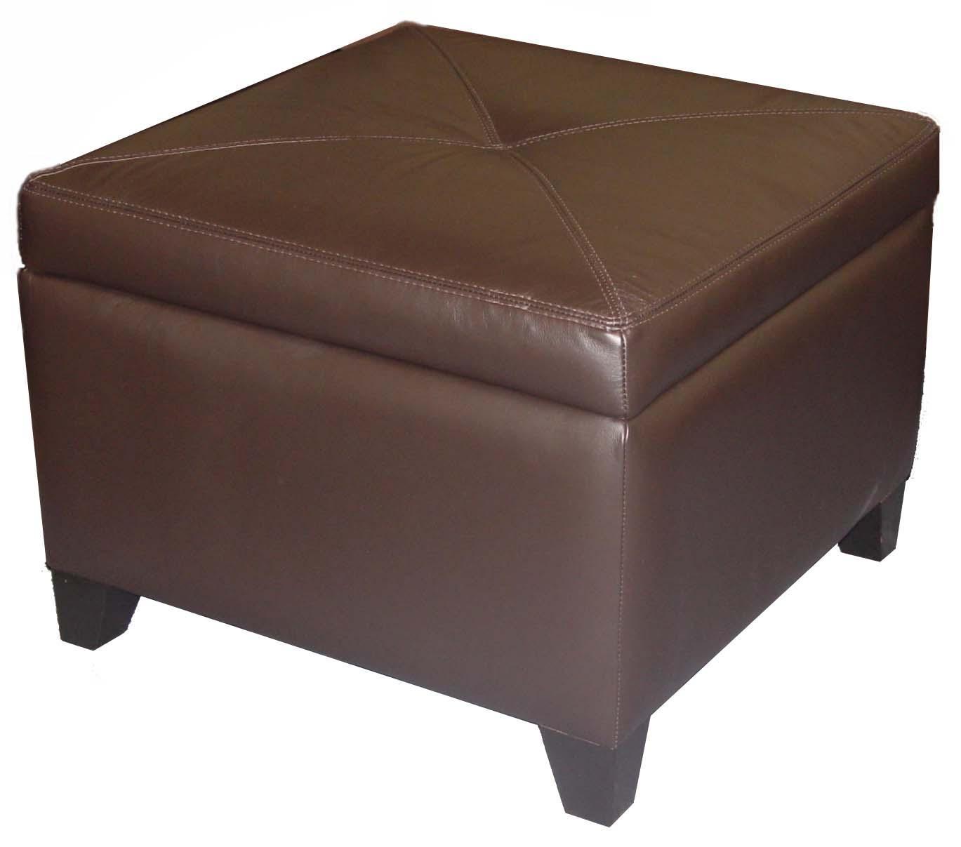 Accentuates Miles Leather Storage Ottoman at Williams & Kay