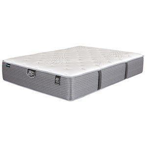 Queen Plush Pocketed Coil Mattress and Prodigy Lumbar Adjustable Base