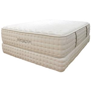 Queen Plush Mattress and Foundation