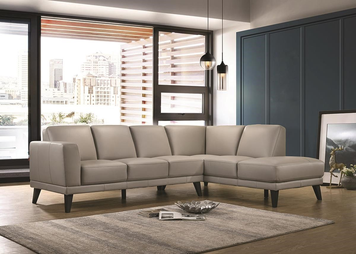 Altamura 2 Piece 100% Top Grain Leather Sectional by New Classic at Darvin Furniture