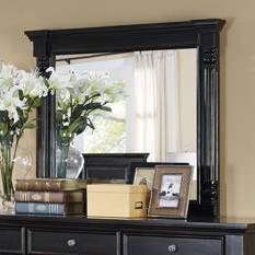 Transitional Framed Mirror
