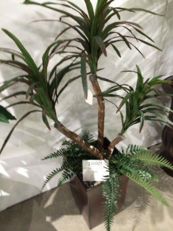 American Made Silk Plants  at Wilcox Furniture