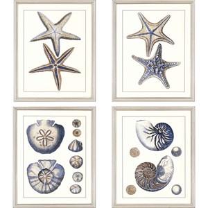 Set of 4 Sea Life Framed Art