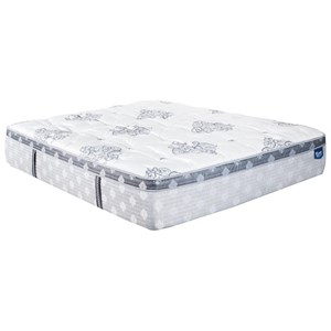 Queen Multi Coil on Coil Euro Top Mattress and Surge Adjustable Base with Massage