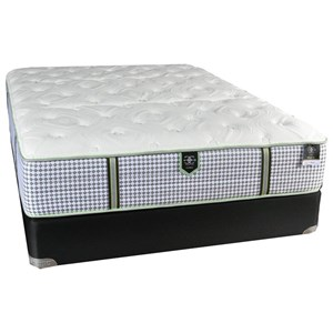 Queen Plush Pocketed Coil Mattress and All Wood Foundation