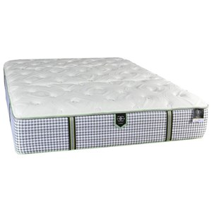 Queen Plush Pocketed Coil Mattress and Surge Adjustable Base with Massage