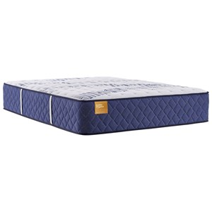"Queen 15 1/2"" Tight Top Encased Coil Mattress and Ease 3.0 Adjustable Base"