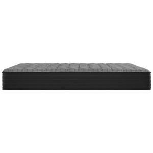 Queen Plush Tight Top Encased Coil Mattress