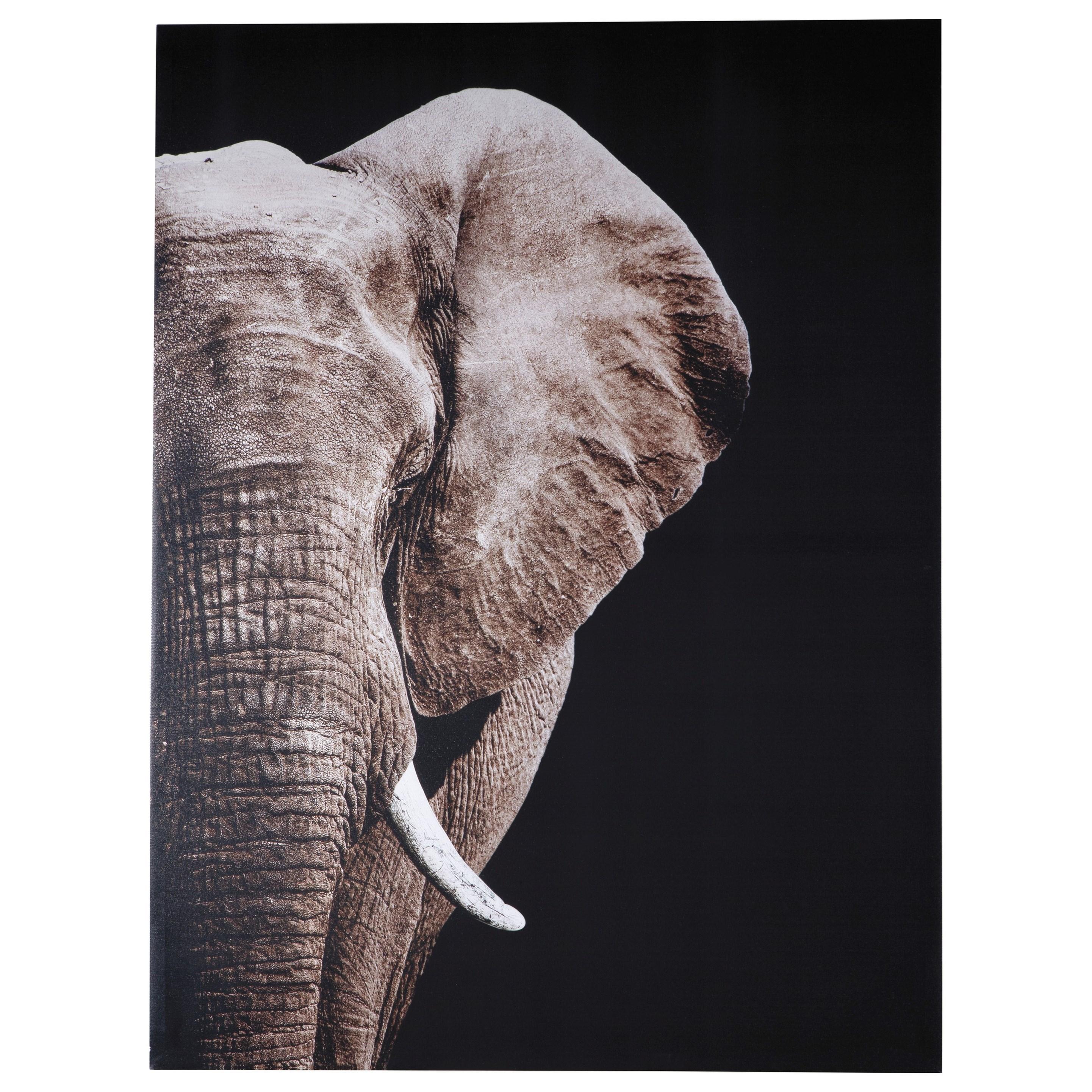 Wall Art Jendayi Elephant Wall Art by Signature at Walker's Furniture