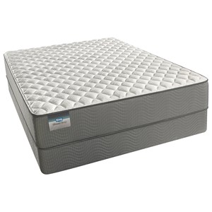 Queen Firm Mattress and Box