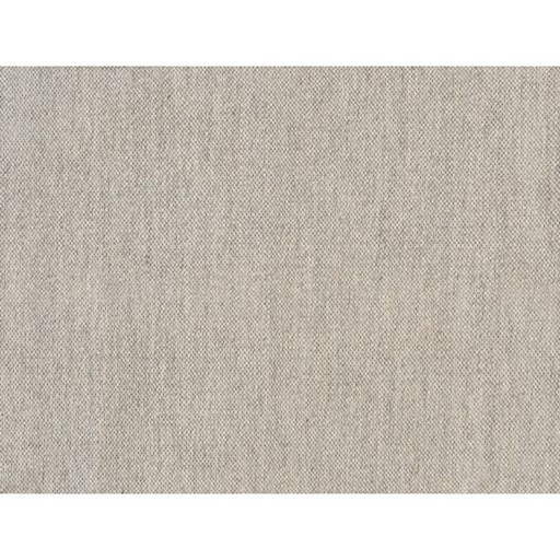 Acacia 2' x 3' Rug by Surya at Reid's Furniture