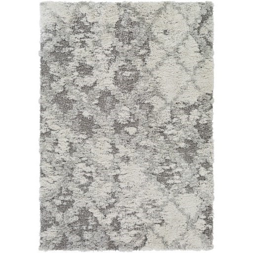 Alta Shag 2' x 3' Rug by Surya at SuperStore