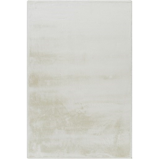 Celeste 2' x 3' Rug by Surya at SuperStore